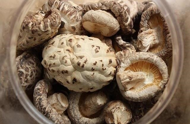 Ingredients 101: You're Not Using Enough Dried Mushrooms & Here's Why