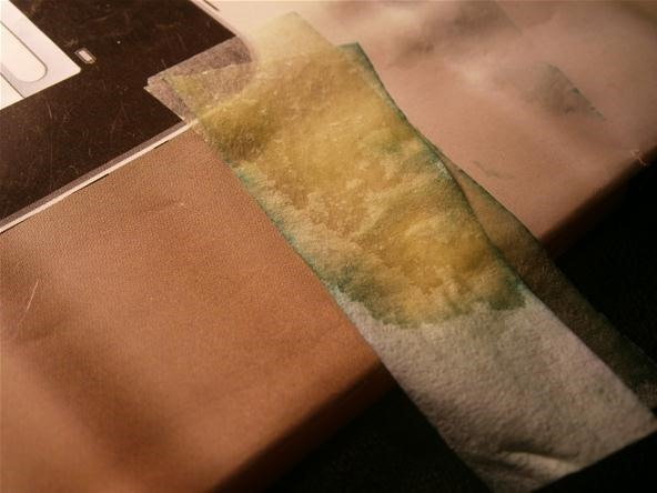 DIY Lab Equipment: Make Your Own Litmus Paper Using Cabbage Juice