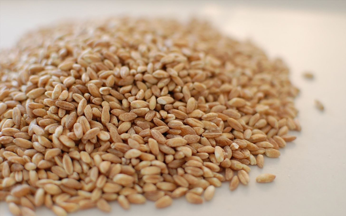 4 Amazing Grains That'll Liven Up Your Gluten-Free Cooking
