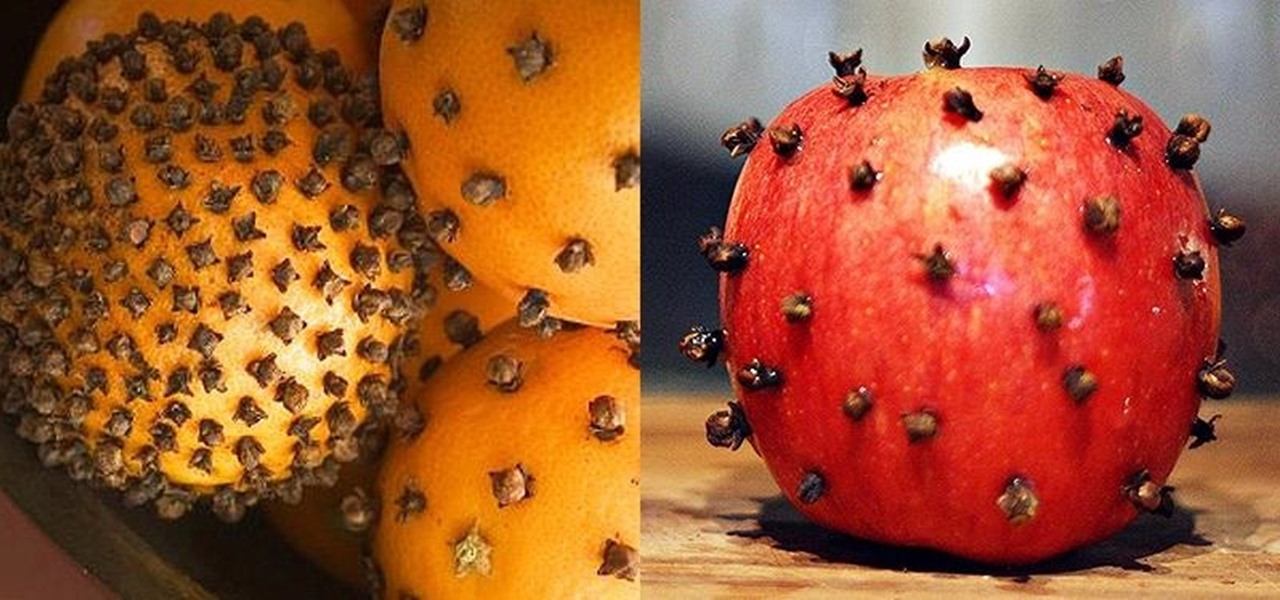 best way to get rid of fruit flies lulo fruit