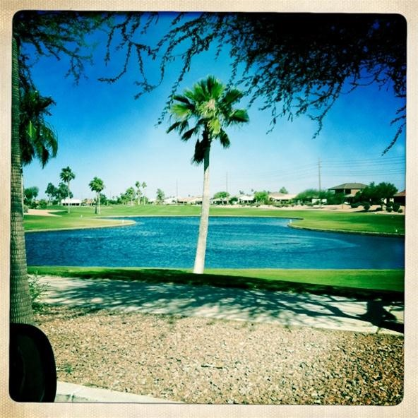 Instagram Challenge: Arizona Golf Cart Drive-By