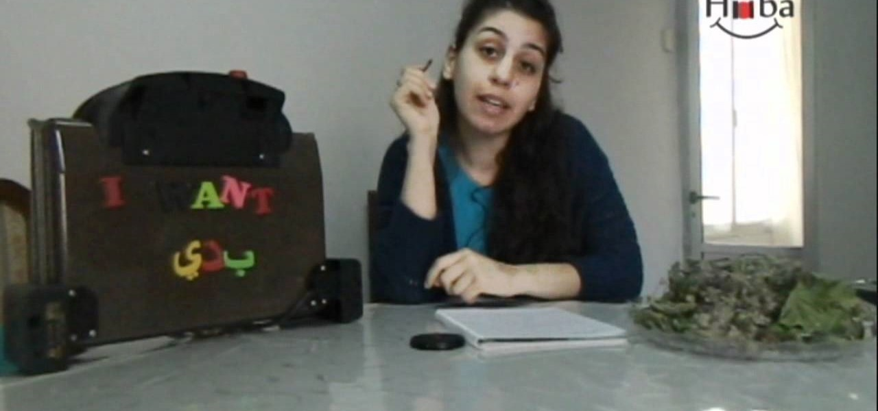 """Speak Lebanese Arabic (""""I Want"""")"""