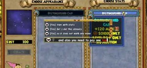 Stitch items on Wizard101 (11/10/09)