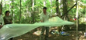 Build a basic shelter out of plastic and cord