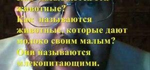 Conjugate 1b verbs in Russian