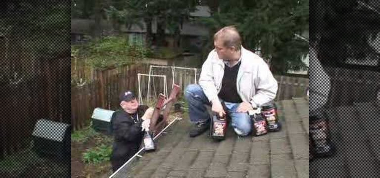 Image Result For Get Rid Of Moss On Roof