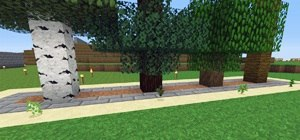 Build a Tree Farm in Minecraft for Easy Access to All Types of Wood