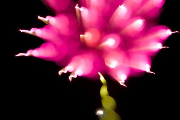 How to Blur Fireworks with Your DSLR for Some Wicked July 4th Photos