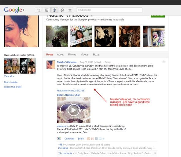 How Businesses Can Prepare for Google+
