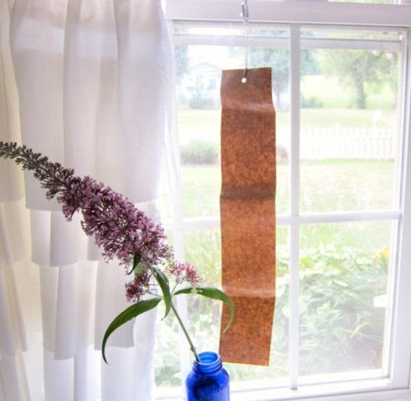 How to Kill or Keep Away Flies & Other Small Pests with Homemade Sticky Flypaper