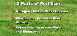 Care for your lawn & keep it green & healthy