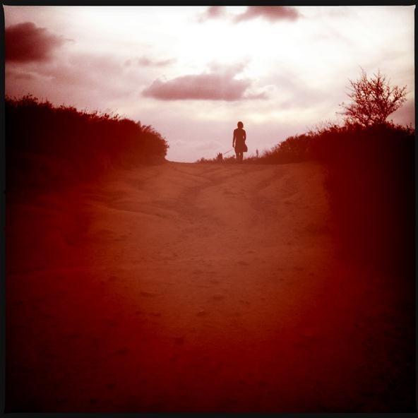 Silhouette Challenge: Journey