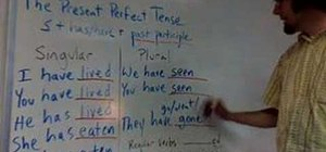 Use the present perfect tense
