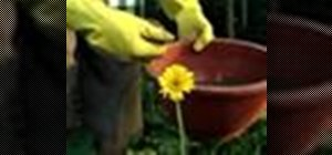 Make fertilizer