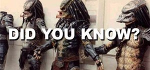 DID YOU KNOW? - Predators Edition