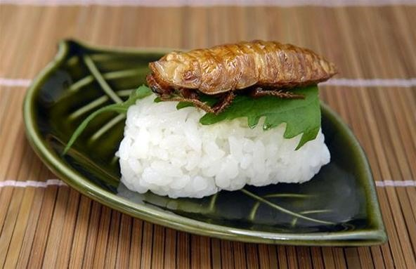 HowTo: Make Insect Sushi (Swear, It Tastes Like Nuts)