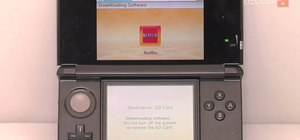 Use Netflix on the Nintendo 3DS to watch 3D movies and TV shows