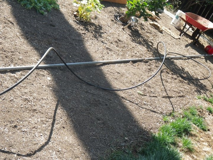 How to Install No-Frills Drip Irrigation