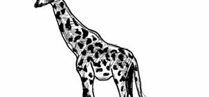 Draw a simple giraffe (jirafa)