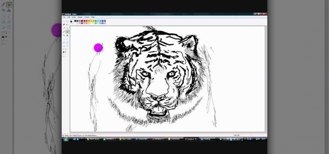 Drawing Lines In Dreamweaver : How to draw a tiger in microsoft paint « software tips