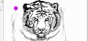 Draw a tiger in Microsoft Paint