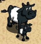 FarmVille Cow Chart
