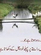 Sana Ullahhamid