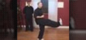 Perform basic kung fu kicks