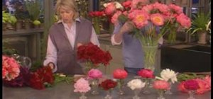 Care for and arrange peonies for spring