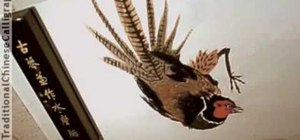 Paint a pheasant with Chinese brush strokes