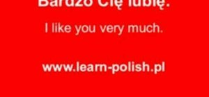 Say words & phrases relating to dating in Polish