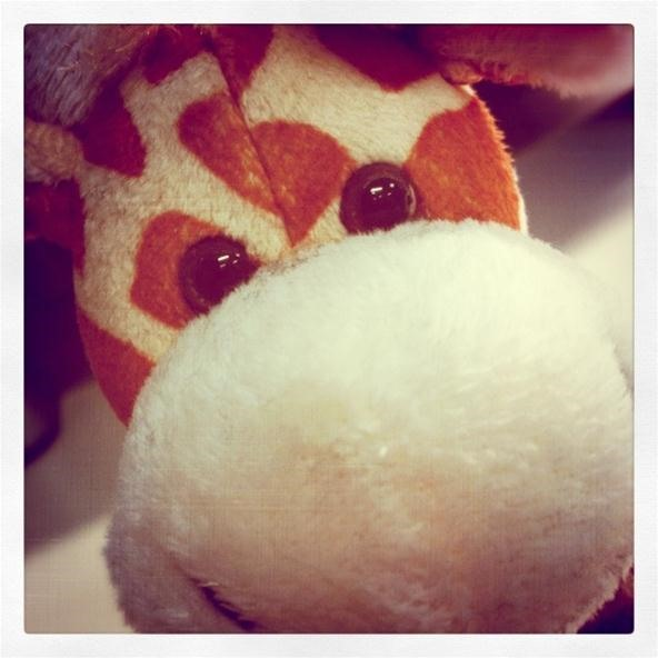 Toy Challenge: Giraffe