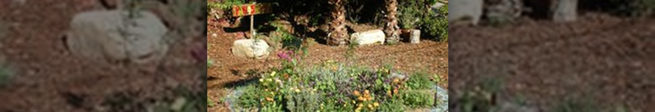 LA county smart gardening tips