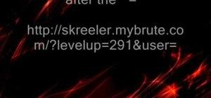 Hack MyBrute (05/13/09)