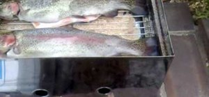 Smoke trout fish in a fish smoker