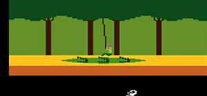 Jackass Pitfall