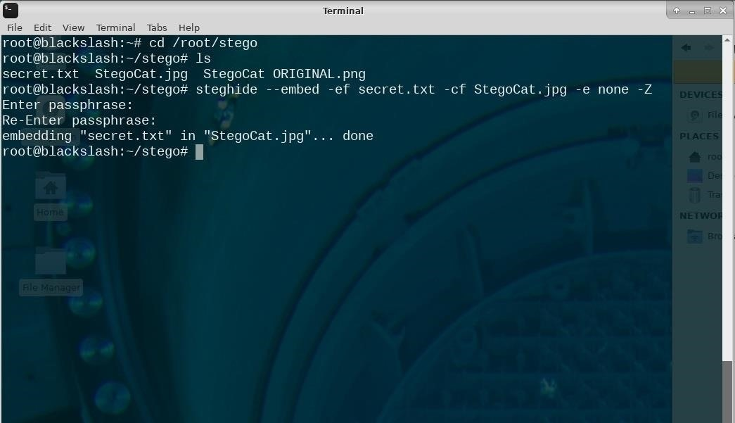 Steganography: How to Hide Secret Data Inside an Image or Audio File in Seconds