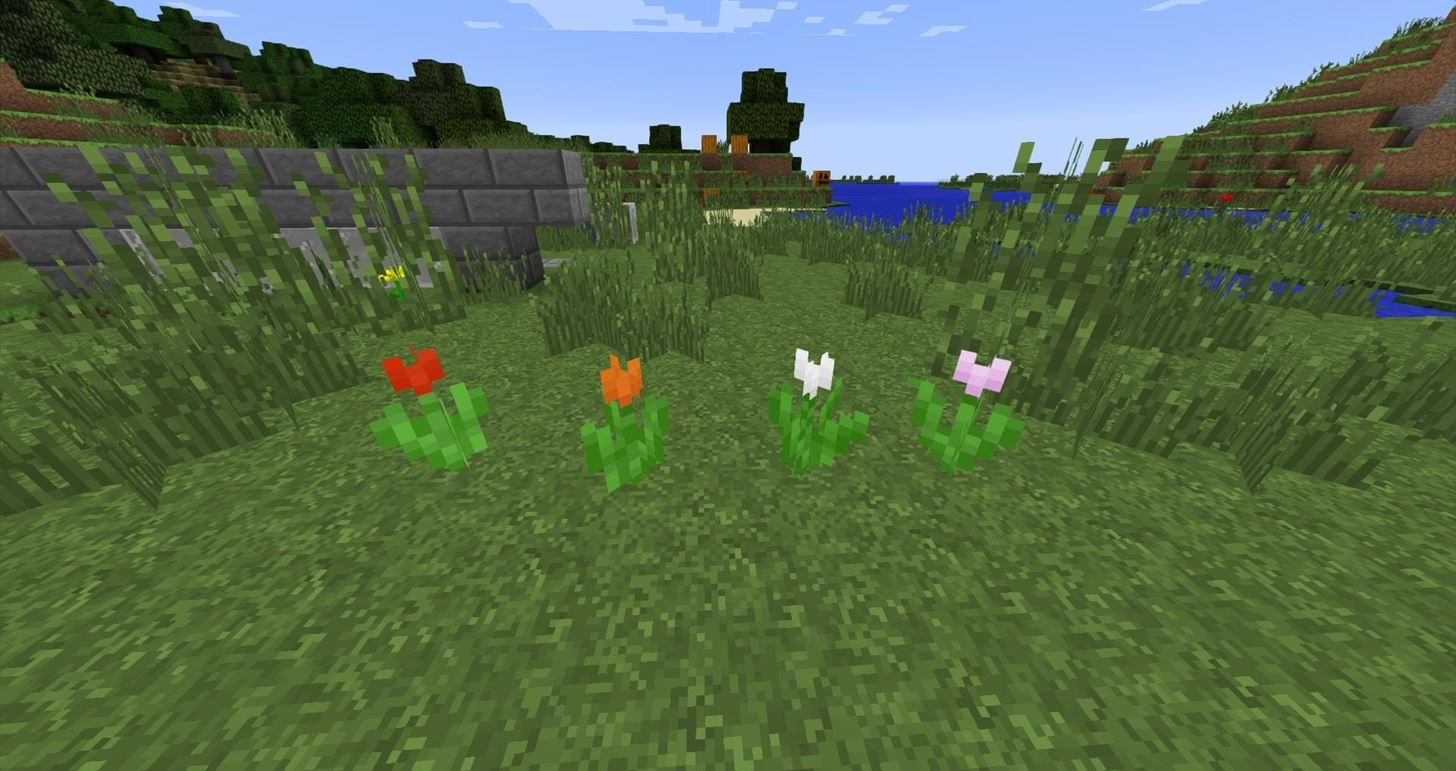 Minecraft 1.7: What's New (Terrain, Flowers & Ground Cover)