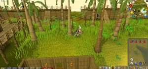 Make lots and lots of money in the online game RuneScape