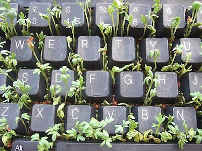5 Crafty and Unique Ways to Make Your Own Seed Starters
