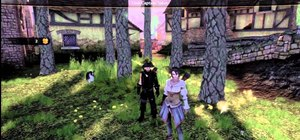 Get unlimited gold in Fable 3 without hacking, only two controllers