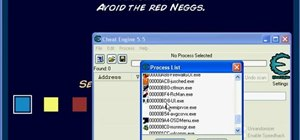 Hack the game Neopets using Cheat Engine (11/23/2010)