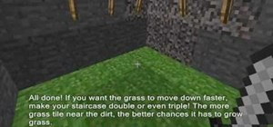 Construct a growing grass lawn underground in Minecraft