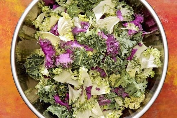 The Tricks to Making Delicious & Tender Kale Salads Every Time