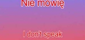 "Say ""I don't speak English "" in Polish"