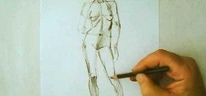 Draw the human figure