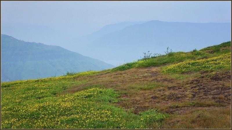 Top Reasons Why Panchgani Tourist Places Top in India?