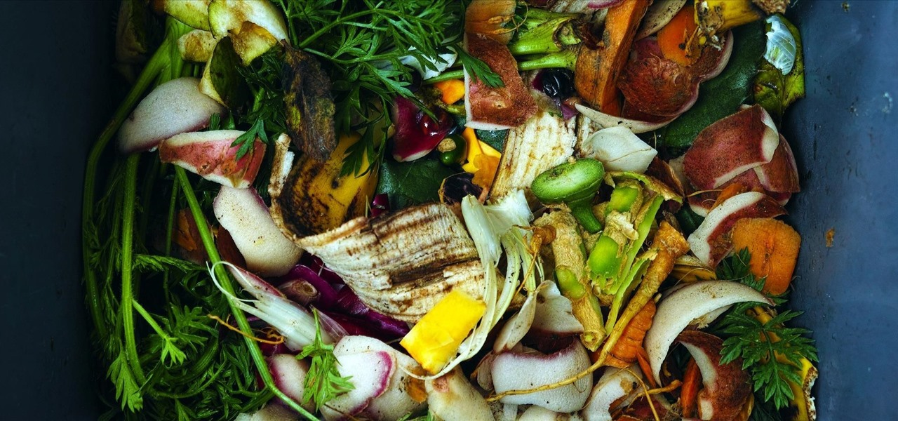 Yes, You Can Compost (Even Without a Yard)