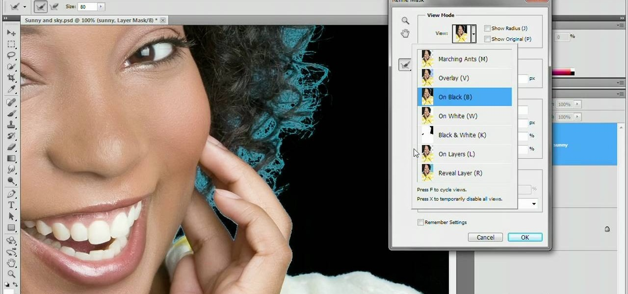 How to Use the Refine Mask tool in Adobe Photoshop CS5 « Photoshop ...